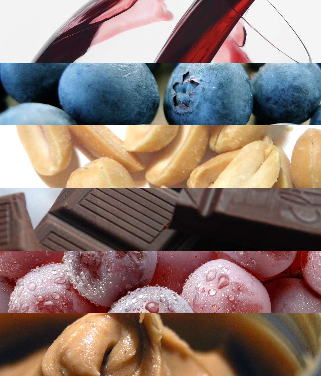 What do Wine, Peanuts, Blueberries and Chocolate Have in Common – Resveratrol