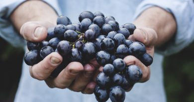 top 10 Health Benefits of Grape Detox Diet